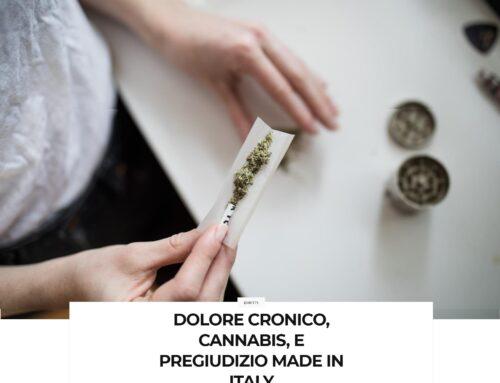 Dolore cronico, Cannabis e pregiudizio Made in Italy